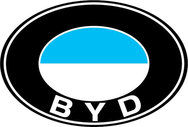 BYD Logo (1995) 1024x768 HD png