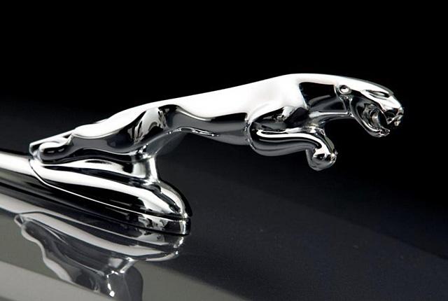 jaguar logo hd png meaning information carlogosorg