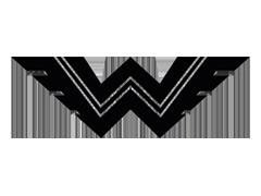 Wanderer-logo.png